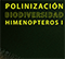 Folleto biodiversiad himenopteros I